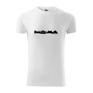 Rím pamiatky - Viper FIT pánske tričko