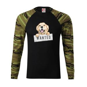 Zlatý retriever - šteniatko wanted - Camouflage LS