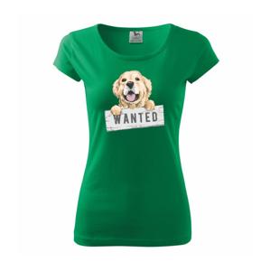 Zlatý retriever - šteniatko wanted - Pure dámske tričko